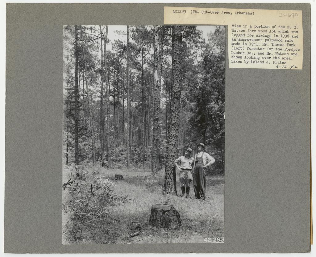 Timber Management - Partial Cutting - Arkansas
