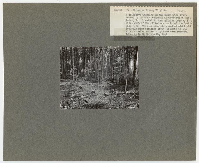 Timber Management - Partial Cutting - Virginia