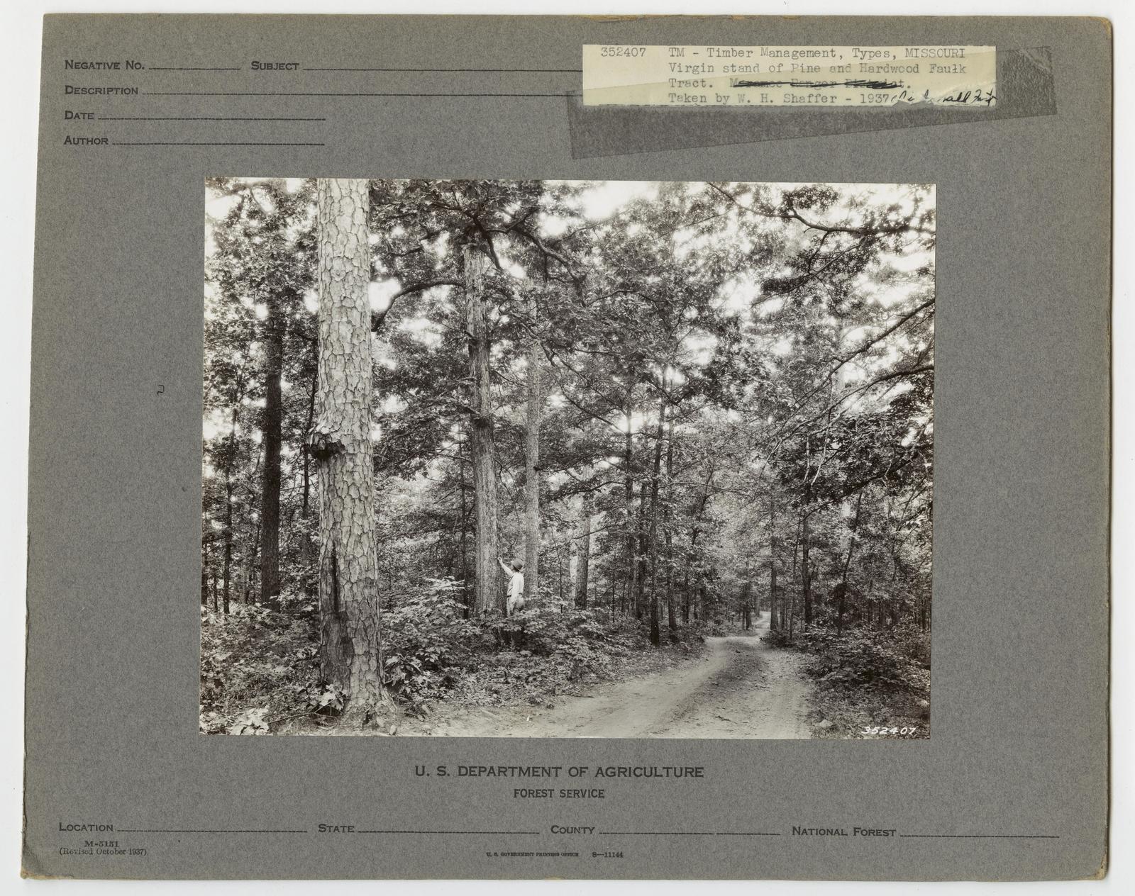 Timber Management: Types - Missouri