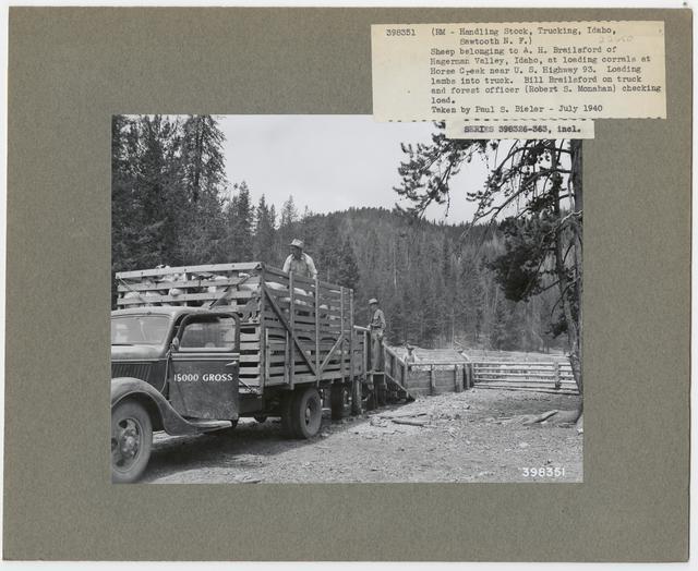 Transportation of Livestock - All States