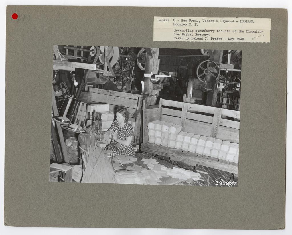 Veneer and Plywood Making - Indiana