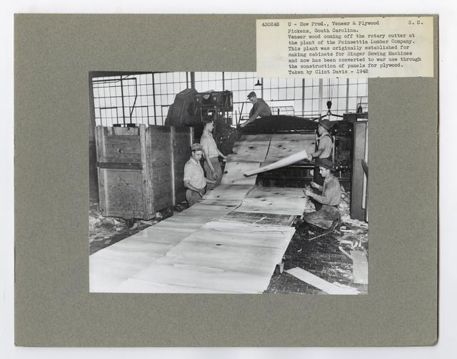 Veneer and Plywood Making - South Carolina