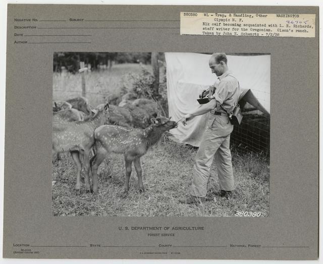 Wildlife Artificial Feeding - All States