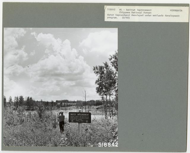 Wildlife Ponds - All States