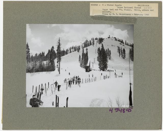 Winter Sports - California