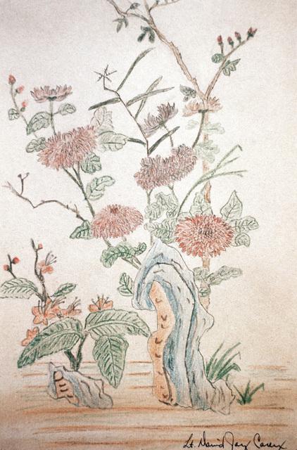 "Artwork: Prisoners of War Art - Vietnam, ""Hanoi Hilton"" camp of detention for U.S. prisoners captured in Vietnam - untitled (wild flowers in bloom) Artist: LT David Jay Carey"