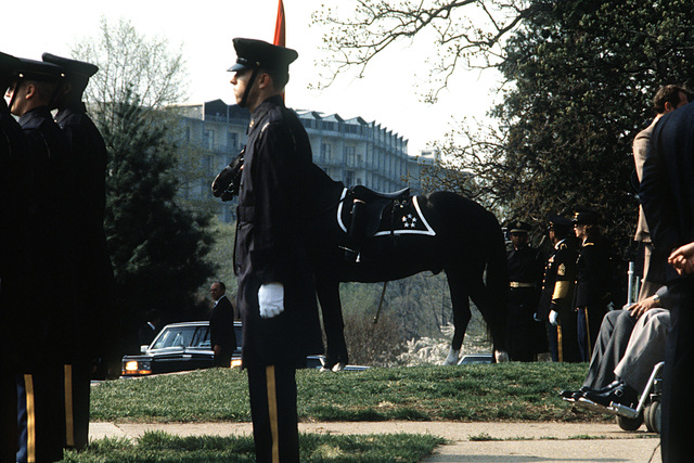 Left side view of a riderless horse and Army soldiers standing at attention during the funeral of retired five-star GEN Omar N. Bradley, USA, to Arlington Cemetery