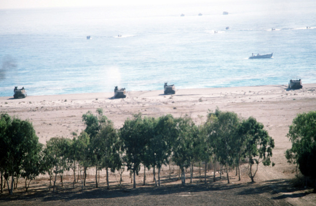 Marines from the 1ST Plt., Co., D, 2nd Assault Amphibious Bn., Camp Lejeune, North Carolina, bring troops ashore on LVTP-7 tracked landing vehicles during Exercise Crisex '81