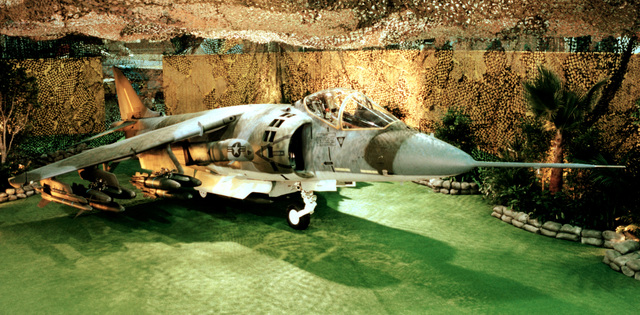 Right front view of a Marine AV-8B Harrier II aircraft on exhibition with a jungle display around it
