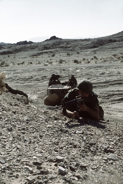Combat-ready LCPL Davis and other members of his fire team from Co. A, 1ST Bn., 8th Marines, have just left an LVTP-7 tracked landing vehicle and are in the prone position, armed with M-16A1 rifles, on the crest of a hill. The Marines are participating in Operation CAX 1-2-82 at the Marine Corps Air-to-Ground Combat Center