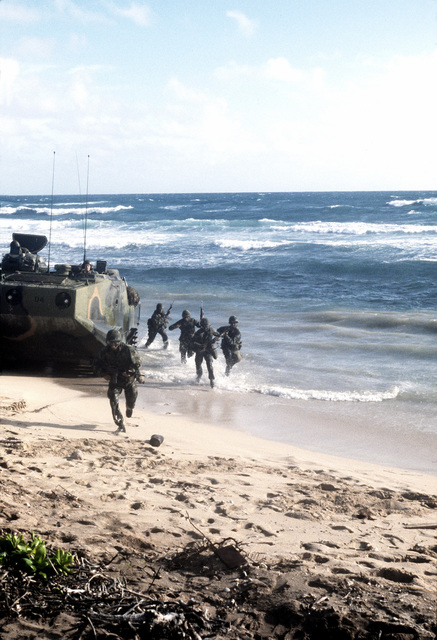 Marines from Battalion Landing Team, 1ST Bn., 3rd Marines (BLT 1/3), land on the beach in the LVTP-7 tracked landing vehicle during a training exercise at Fort Hasey