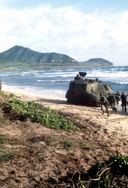 Marines from Battalion Landing Team, 1ST Bn., 3rd Marines (BLT 1/3), move inland after landing on the beach in an LVTP-7 tracked landing vehicle during a routine training exercise