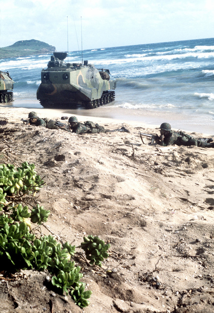 Marines from the Battalion Landing Team (BLT 1/3), 3rd Marine Division, take defensive positions after landing on the beach in an LVTP-7 tracked landing vehicle during a routine training exercise