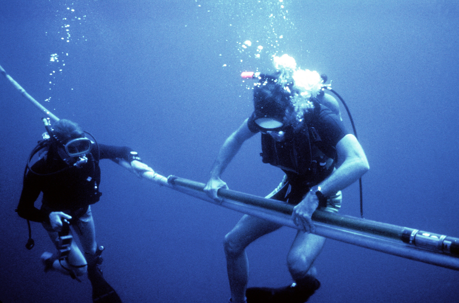 Navy divers set up a scientific experiment off Andros Island, Bahamas