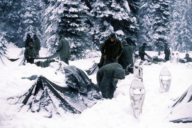 Marines from Company B, 1ST Tank Battalion, put their campsite in order prior to starting their cold weather training for that day