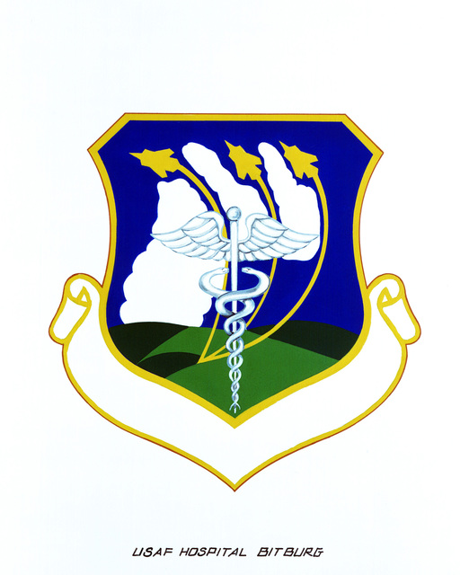 Approved insignia for: U.S. Air Force Hospital Bitburg