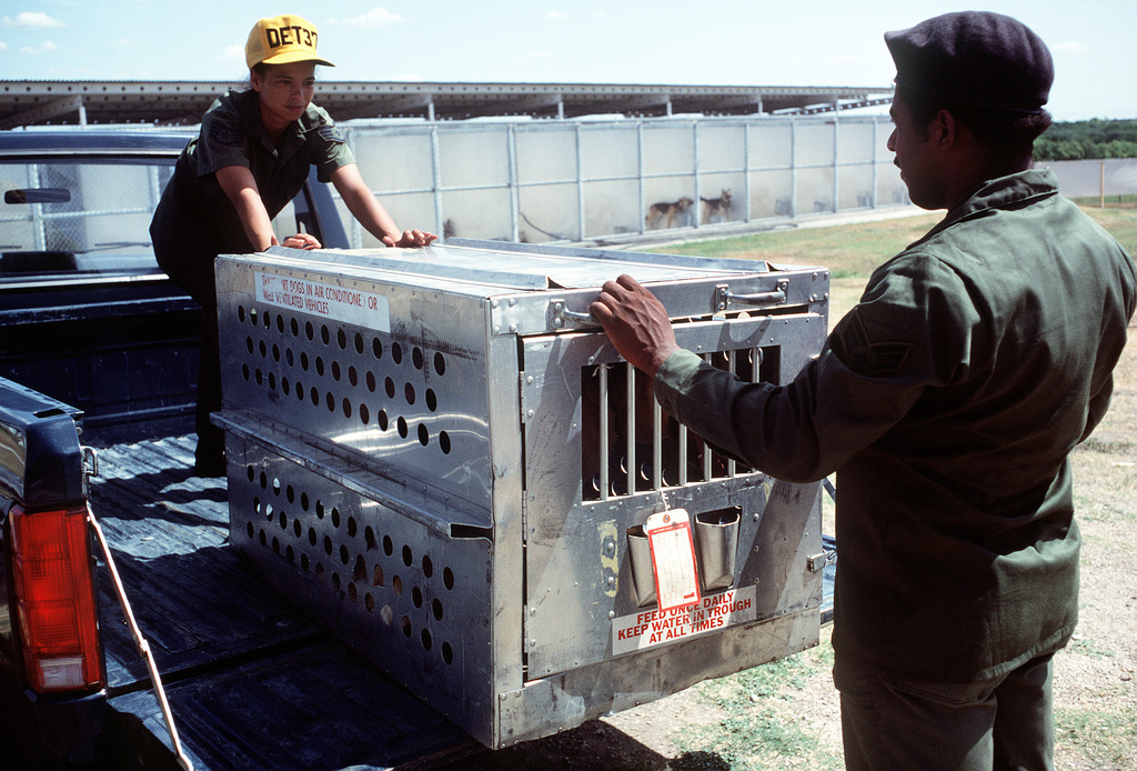 SSGT Jamie Keenan (left) and SGT Bernard Pruitt unload a metal animal crate, containing a new dog, at the Department of Defense Dog Center