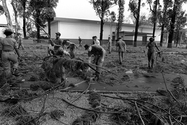 A clean-up crew picks up tree branches knocked down by Hurricane Iwa