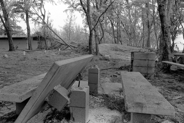 A view of a picnic area that was damaged by high winds during by Hurricane Iwa
