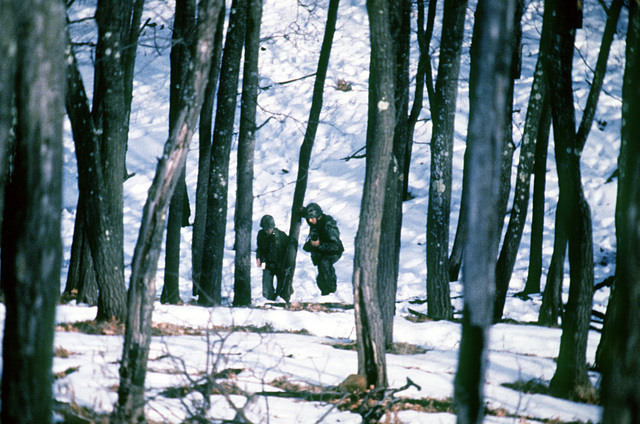 Members of the 1ST Battalion, 75th Rangers, move through the woods during an exercise taking place in conjunction with an A-10 Thunderbolt II aircraft practice bombing