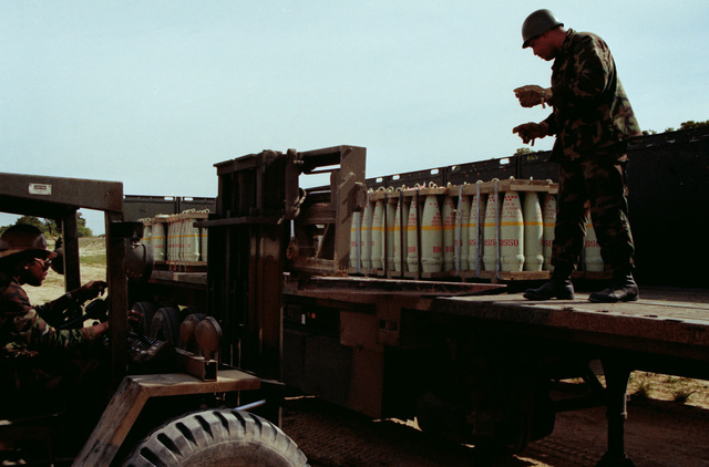 SPECIALIST 5 Johnson directs the operator of an RT-4000 forklift in unloading pallets of ammunition from a flatbed truck during LIFELINE operations conducted by the 155th, 567th and 870th Transportation Companies