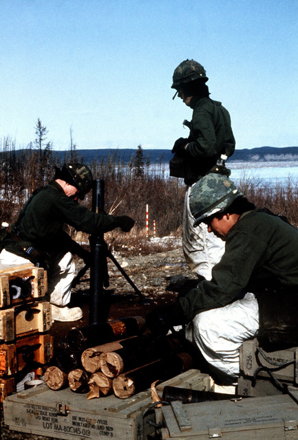 A mortar crew from Company A, 6th Battalion, 327th Infantry Regiment, prepares an M29A1 mortar for a live fire exercise during CELESTIAL EMPIRE '83