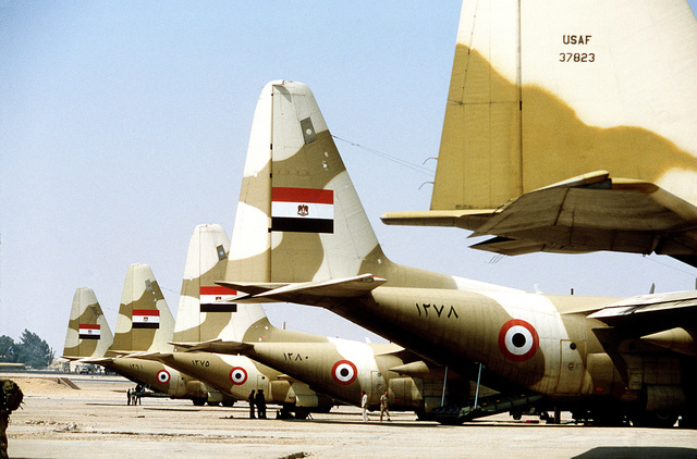 A right rear view of Egyptian C-130 Hercules aircraft (tail section) in use during the joint Exercise BRIGHT STAR '83. The tail of a USAF C-130 is also visible in the foreground