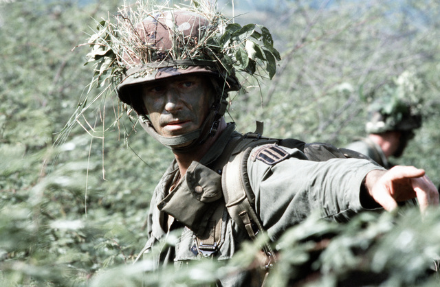 A platoon leader from Company B, 1ST Battalion, 187th Infantry, 193rd Brigade Task Force from Panama, wearing camouflage, points out the direction for his men to take during the joint US/Honduras training Exercise AHUAS TARA II (BIG PINE)