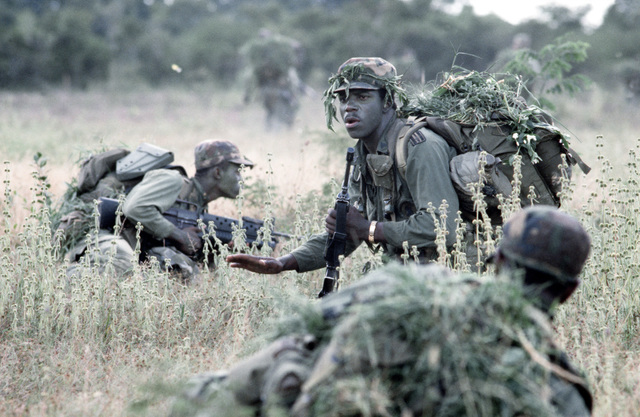 Members of Company B, 1ST Battalion, 187th Infantry, 193rd Brigade Task Force from Panama, take cover during the joint US/Honduras training Exercise AHUAS TARA II (BIG PINE). They are wearing camouflage and are armed with M16A1 rifles and an M203 grenade launcher