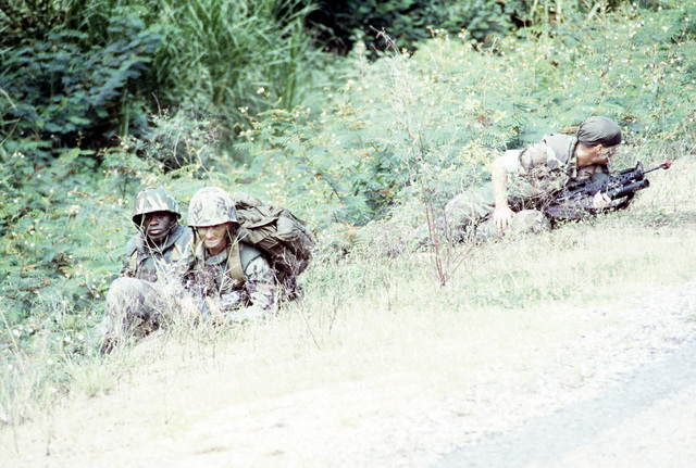 Soldiers take cover in high grass as they participate in the joint U.S./Honduras field training exercise Ahuas Tara II (Big Pine)