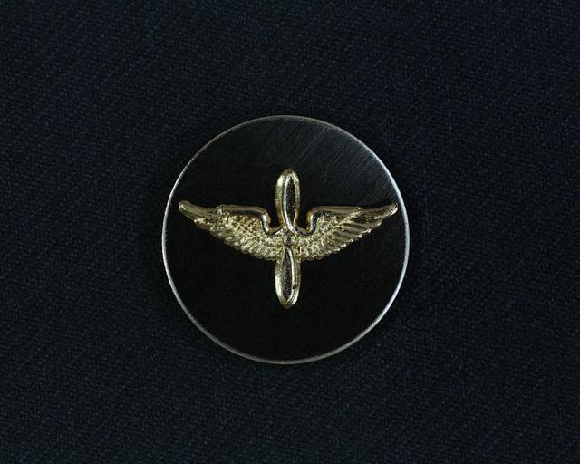 US Army Aviation Branch Emblem, Enlisted
