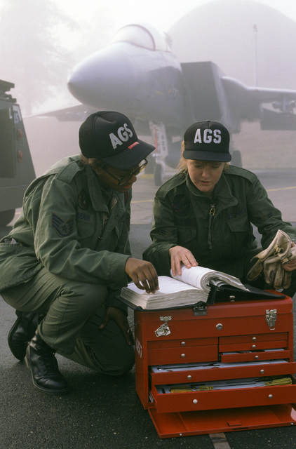 STAFF Sergeant Cynthia D. Pearman and AIRMAN First Class Sara L. Daleski, both integration avionics systems specialist with the 525th Aircraft Maintenance Unit, 36th Aircraft Generation Squadron, check a technical order prior to servicing the avionics system of an F-15 Eagle aircraft