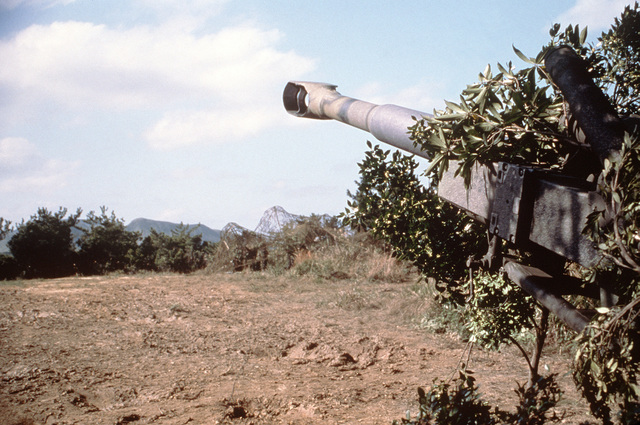 The barrel of a 155 mm Howitzer protrudes from a cover of tree branches and points down range at Camp Hansen during a live fire exercise