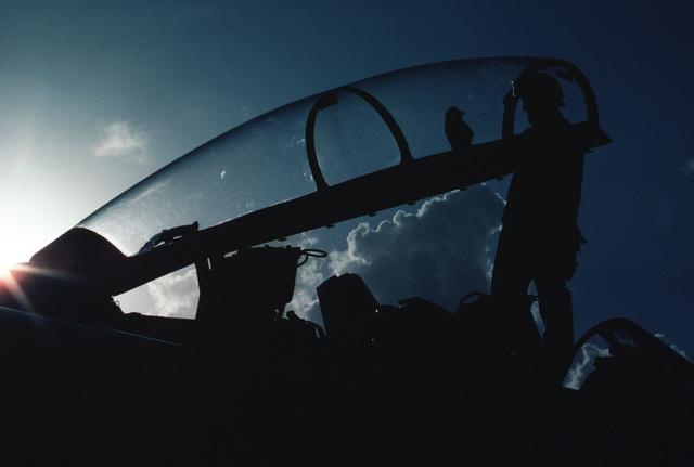 A plane captain polishes the canopy of an F-14 Tomcat aircraft aboard the nuclear-powered aircraft carrier USS NIMITZ (CVN 68)