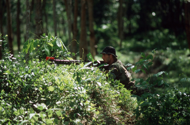 """A US Marine sights the """"enemy"""" while on combat patrol during COBRA GOLD '85, a joint US/Thai training exercise"""