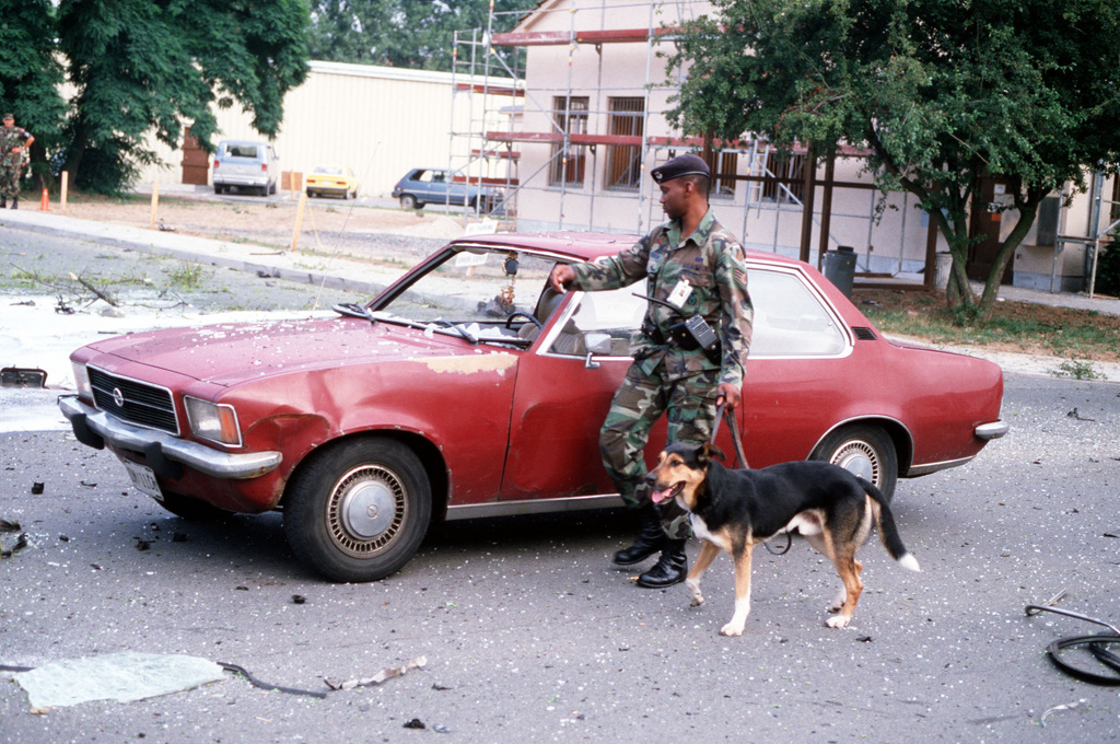 STAFF Sergeant (SSGT) Mike Henson, 435 Security Police Squadron, and a dog trained in searching for explosives, inspect a car following the explosion of a car bomb. The explosion took place behind the 435th Tactical Air Wing Headquarters
