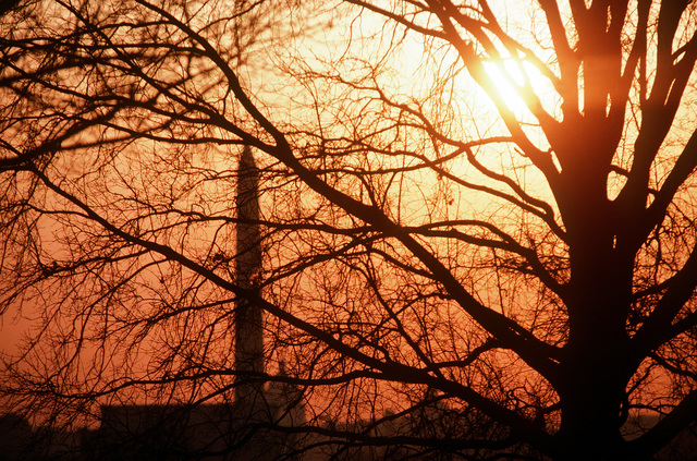 View of Washington Memorial and U.S. Capitol building seen through tree branches and silhouetted by the setting sun. Exact Date Shot Unknown