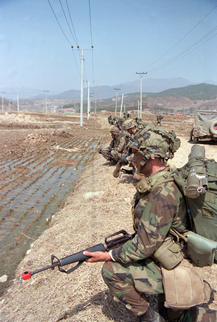 Soldiers of the 1ST Battalion, 35th Infantry Division, 25th Infantry Division, spread out along a rice paddy while participating in an air assault during the joint US/South Korean Exercise TEAM SPIRIT '86