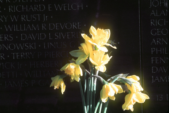 A bouquet of yellow lillies are placed in front of names on the Vietnam Memorial Wall in Washington D.C. Exact Date Shot Unknown
