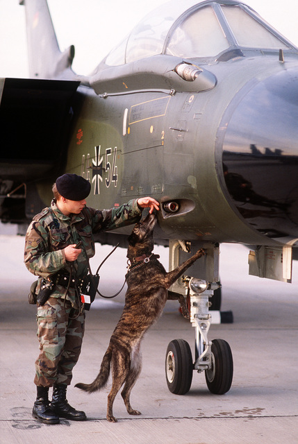 A security policeman and his dog check a West German Tornado aircraft parked on the flight line before the start of the change of command ceremony for GEN. Charles L. Donnelly Jr., departing commander-in-chief, U.S. Air Force Europe, and Allied Air Forces Central Europe. Donnelly is being replaced by GEN. William L. Kirk, former commander, 9th Air Force