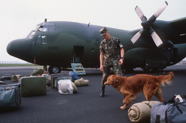 An Army customs inspector uses a narcotics detection dog to check the baggage of members of the 440th Tactical Airlift Wing, Air Force Reserve prior to their departure by C-130A Hercules aircraft.  The reservist, who are returning to the United States during the redeployment phase of Exercise VOLANT PARTNER 87-1, flew airlift missions to 30 air bases in nine NATO nations during their deployment in Europe