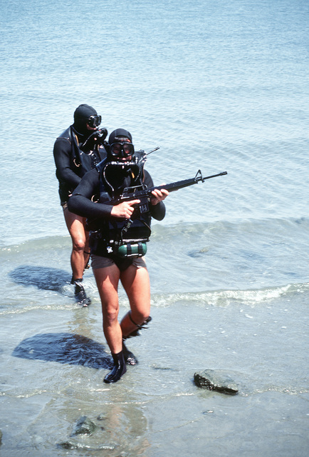 Trainees dressed in scuba gear come ashore carrying M16A1 rifles during Basic Underwater Demolition/SEAL (BUD/S) training