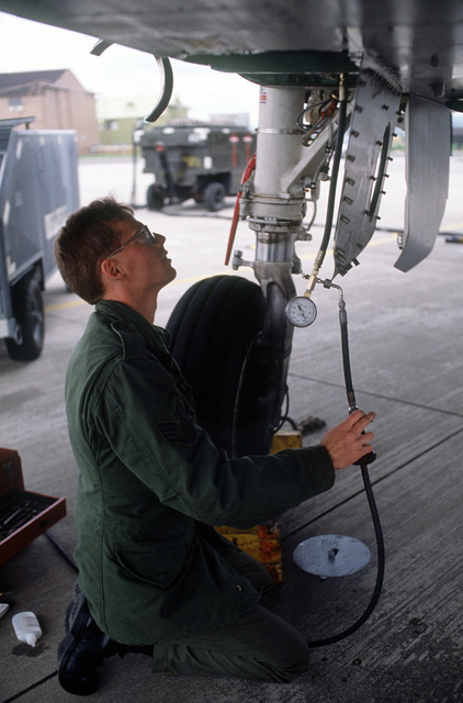 A crew chief checks the fluid levels of an F-15C Eagle aircraft from the 36th Tactical Figher Wing