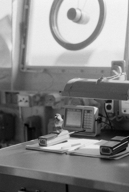 A small bird sits on a walkie-talkie aboard the ocean minesweeper USS ILLUSIVE (MSO 448). The ILLUSIVE is one of three minesweepers being towed to the Persian Gulf to support US Navy escort operations