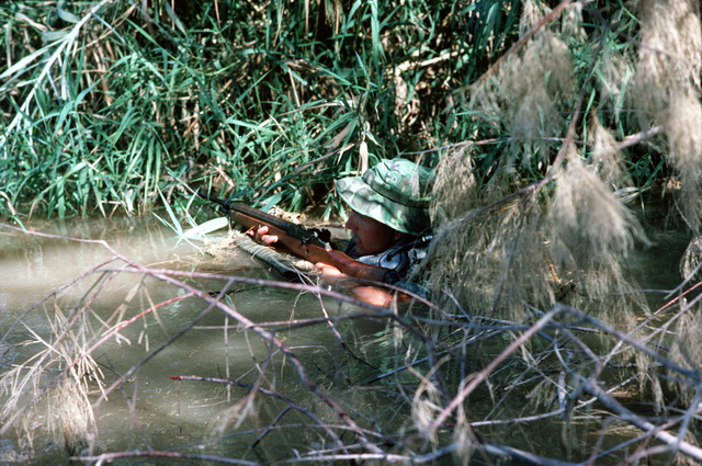 Armed with an M14 rifle, a US Navy Sea-Air-Land (SEAL) team member hides in the foliage at the edge of a river while providing cover for fellow team members during tactical warfare training. He is using a floatation device to minimize his swimming movements