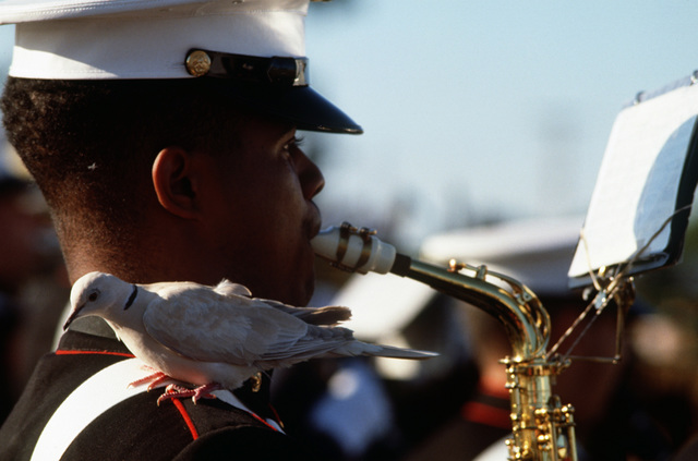 Marine Corps band member Lance Corporal (LCPL)  Michael Morgan plays the saxophone as one fo the 88 doves released during the opening ceremony of the 1988 Conseil International Du Sport Militaire's Cross Country Championship (CISM) rests on his shoulder