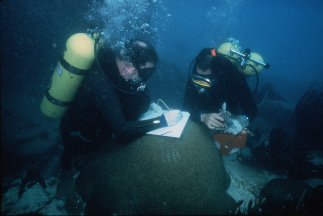 Lieutenant (LT) John Kully and Commander (CDR) Dave Peterson write down measurements on a section of a historic shipwreck which dates back to about 1870.  Members of the Naval Reserve Mobile Diving and Salvage Unit 2, Detachment 506 (MDSU-2, DET-506), from Norfolk, Virginia (VA), are assisting the National Park Service with archeological mapping of the wreck near Loggerhead Key