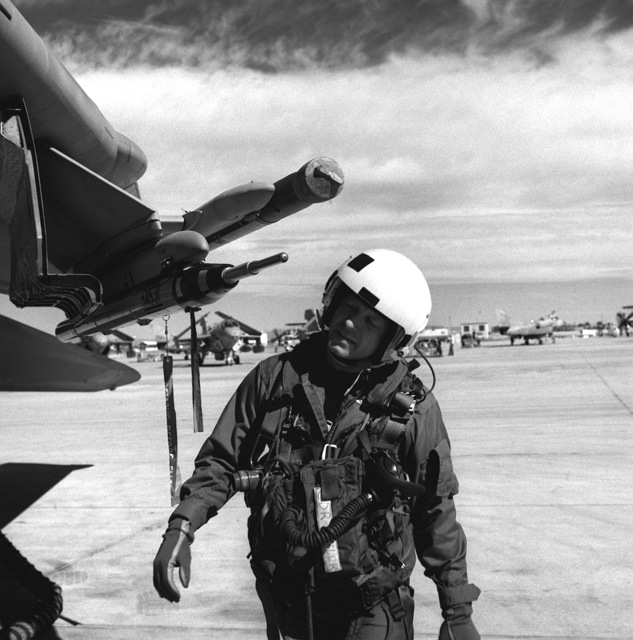 """CDR R.M. """"Bud"""" Taylor, deputy commander, Carrier Air Wing 1 (CVW-1), performs a preflight check on an F-14A Tomcat aircraft during CVW-1 strike training"""