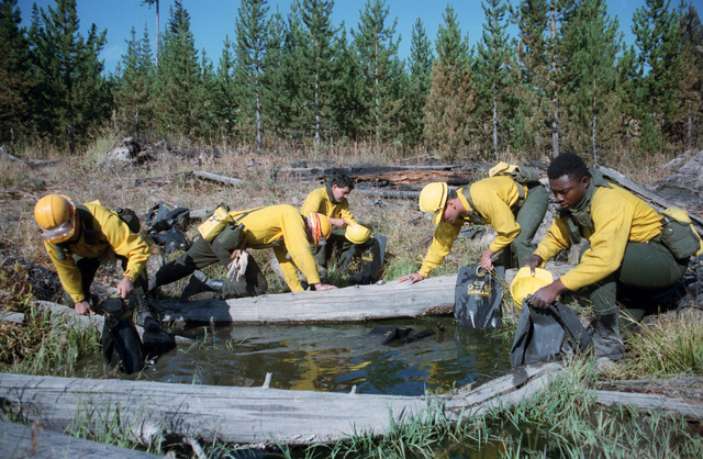Members of the 4th Battalion, 23rd Infantry Regiment, build a fire line during the firefighting efforts in Yellowstone National Park