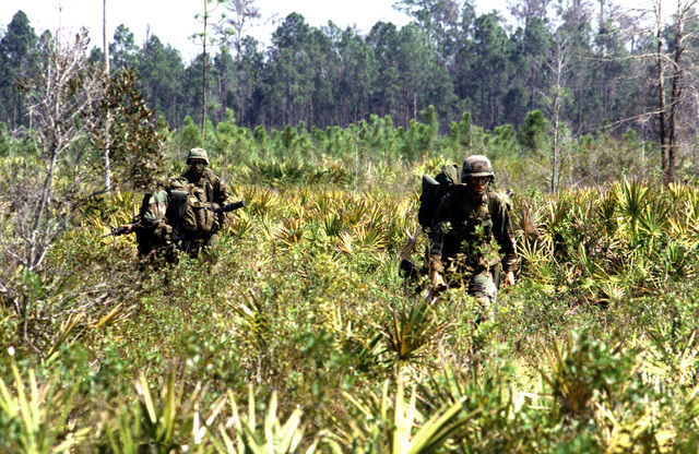 Three soldiers from the 82nd Airborne Division move through the brush as they approach their objective during Exercise SAND EAGLE '89